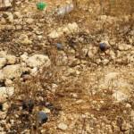 I resti delle precedenti dimostrazioni (bombe sono